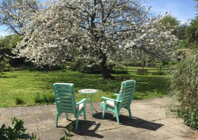Petit Tor garden in May with cherry tree in bloom, isle of wight self catering accommodation
