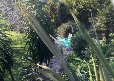 Lower garden - Large terrace to sit in in the jungly garden